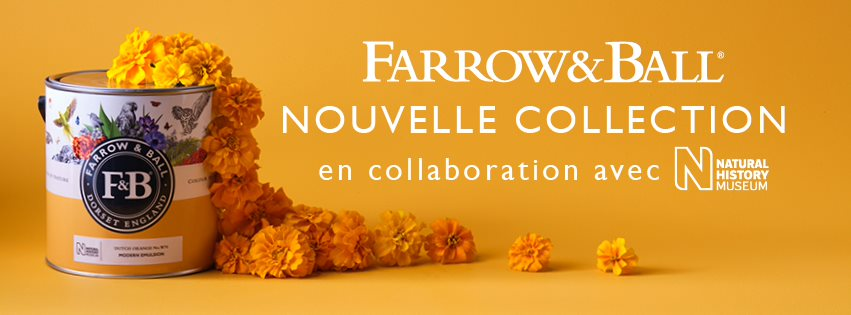 colorbynature - Farrow and Ball - Couleurs et contrastes